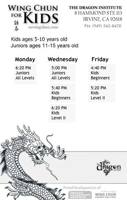 Kids Kung Fu Classes - Irvine
