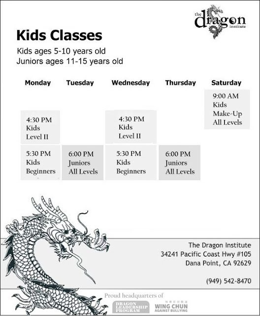Wing Chun Classes for Kids - Dana Point