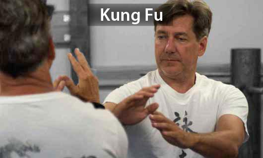 Kung Fu for Adults