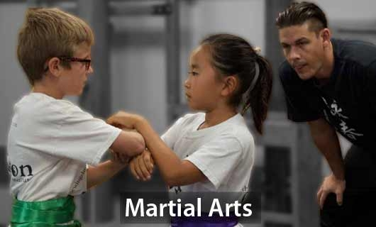 Martial Arts Classes for Kids / Childrens