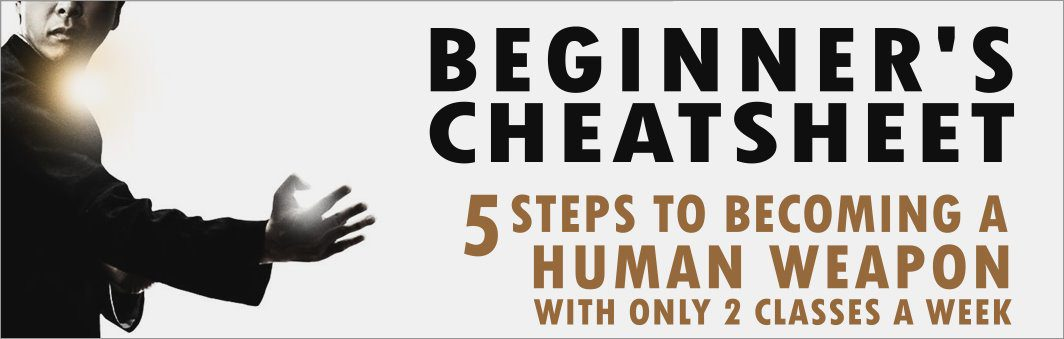 Wing Chun Beginner's Cheatsheet