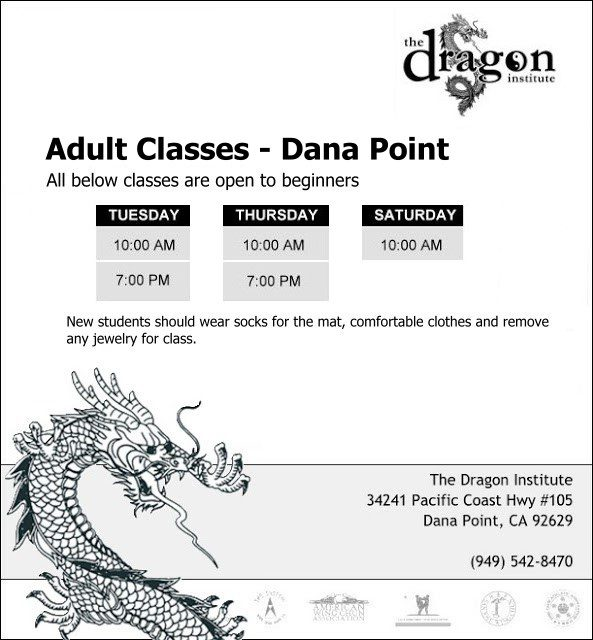 Dana Point Martial Arts Classes - Adults Wing Chun