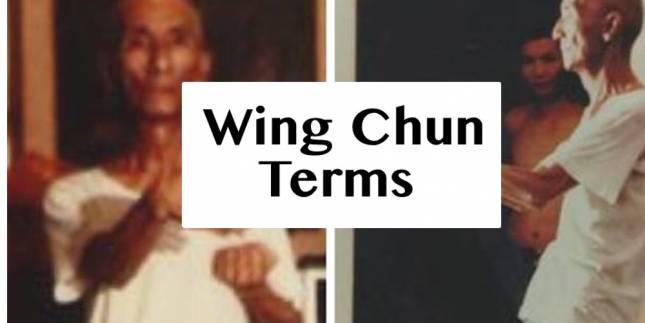 Wing Chun Terms